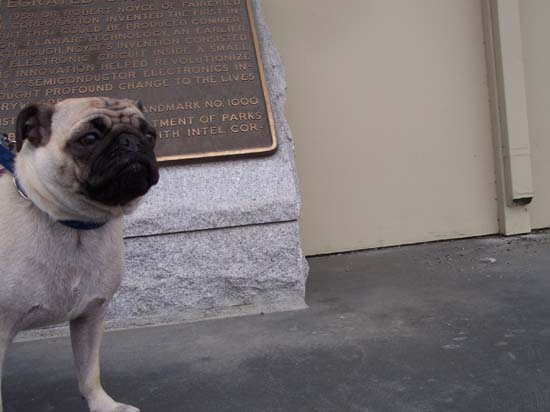 Pug View of where the integrated circuit was invented