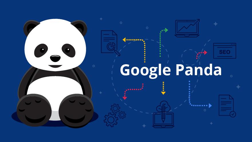 Google_Panda_Images-Request_A-768x432